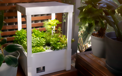 Demeter Mini: Your intelligent indoor garden